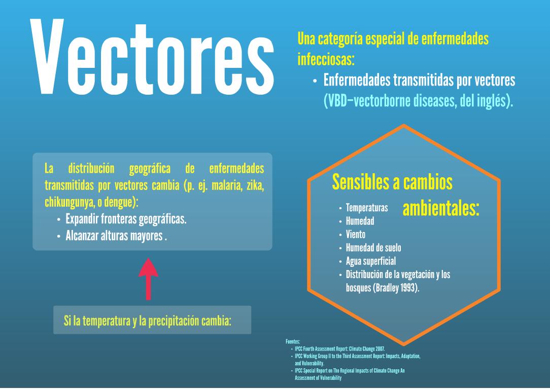 vectors.png